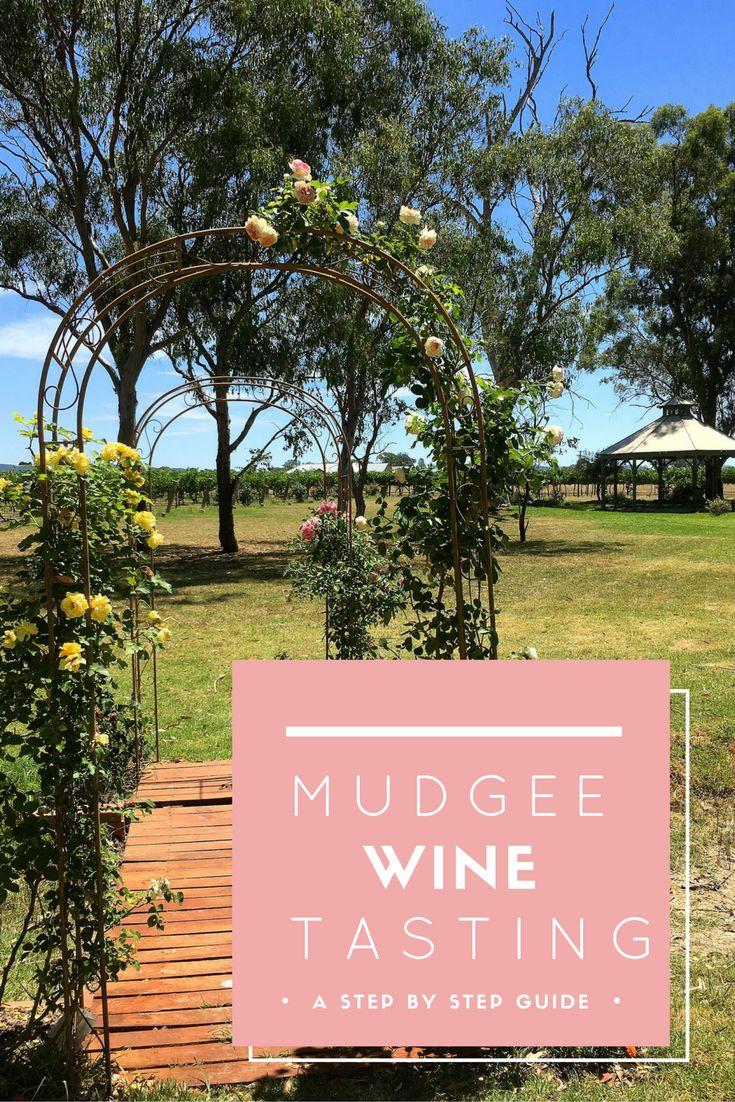 Wine tasting in Mudgee Wine Region | Mudgee Wine Region Infographic | Things To Do In Australia