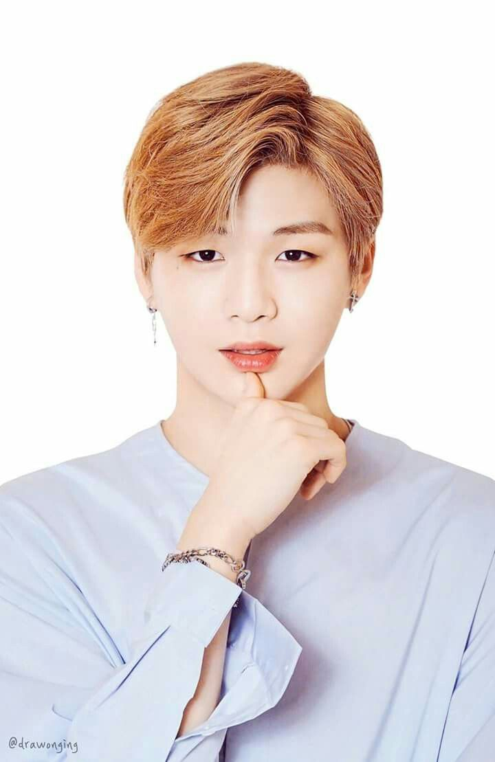 Handsome Cute Boy Hd Wallpaper Kang Daniel Kang Daniel Pinterest Produce 101 Kpop