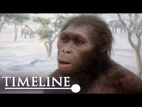 The Strange Case Of Peking Man (Evolution Documentary) | Timeline - YouTube