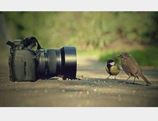 mettersi in posa #fotografia  #divertente