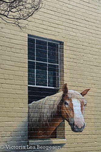 Chouette, un cheval dans nos murs ! / STreet art.