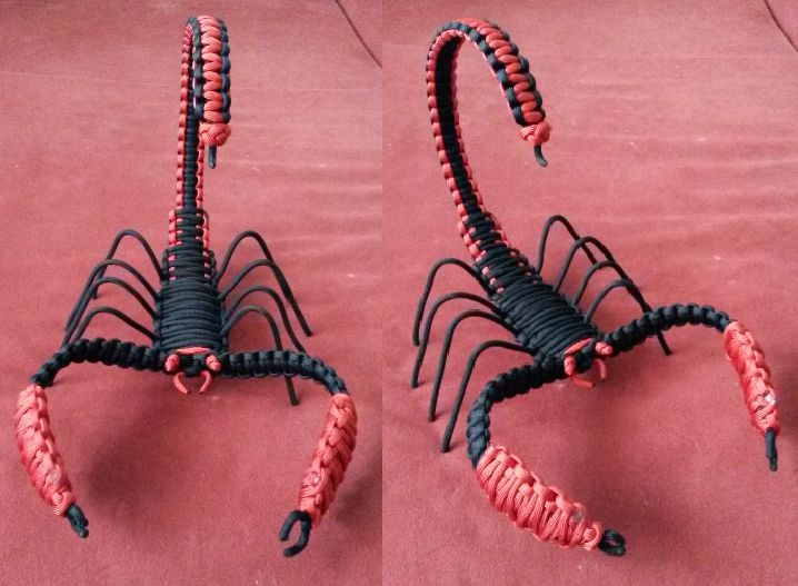 Scorpion | Paracord - My Attemps | Pinterest | Scorpion ...