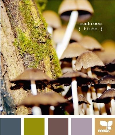 Paint color schemes - mushroom tints house-ideas