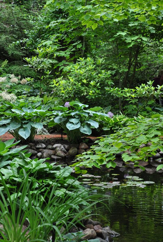 1000 ideas about small water features on pinterest for Pond shade ideas