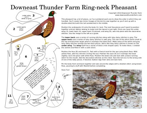 ring-neck pheasant pattern and other birds