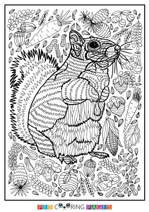 680 best Animals images on Pinterest Coloring books, Adult - copy lsu tigers coloring pages