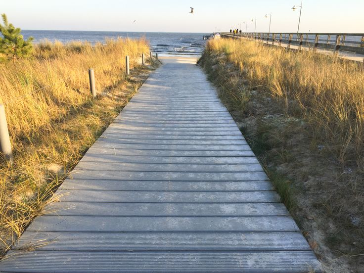 Wandern auf der Insel Usedom - Strandwandern von Trassenheide nach Ückeritz