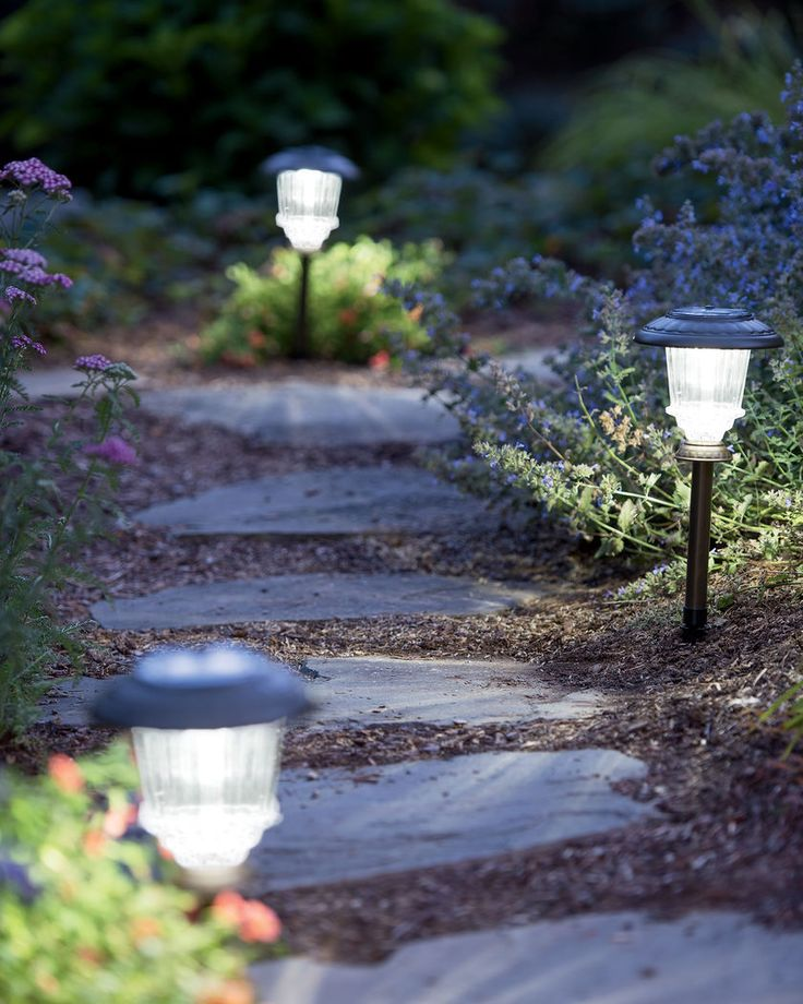 Light Your Way with Weatherproof Solar Path Lights                                                                                                                                                                                 More