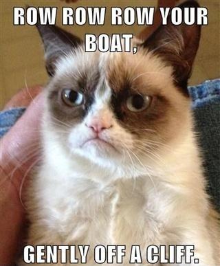 Hahaha I love this cat