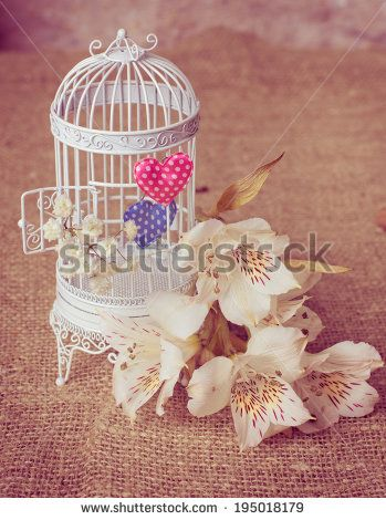Decorative  cage  with flowers and valentines - stock photo