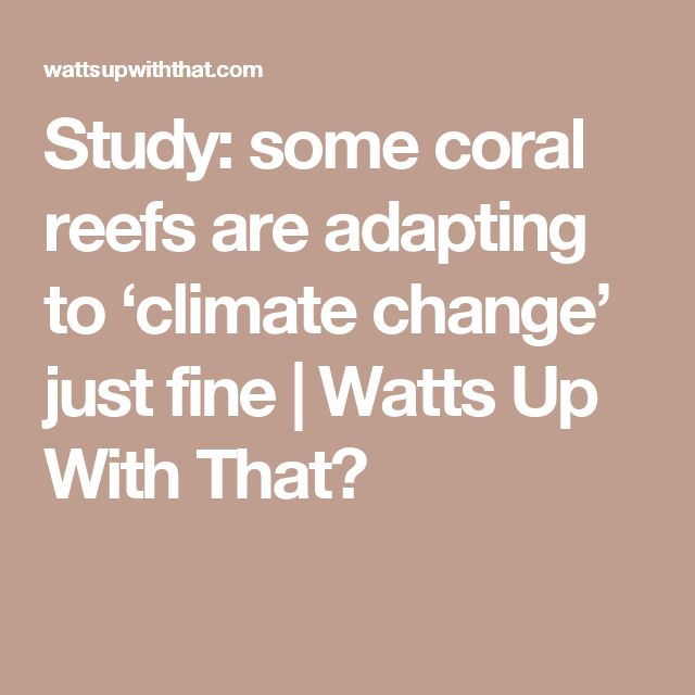 Study: some coral reefs are adapting to 'climate change' just fine | Watts Up With That?