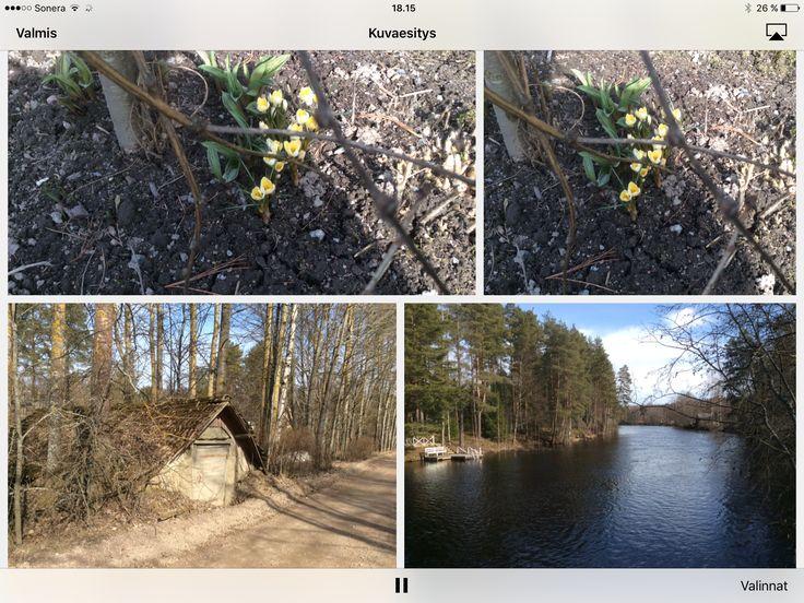 Ihana kevät ☀️