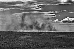 tempestade de arreia - Yahoo Image Search results