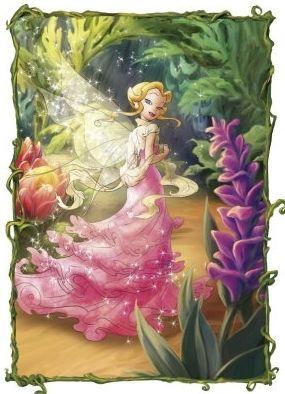 247 Best Disney Fairies Images On Pinterest Tinkerbell