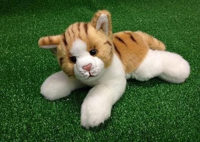 CUDDLY CRITTERS SOFT PLUSH ORANGE CAT TILDA I COOL CAT COLLECTABLES
