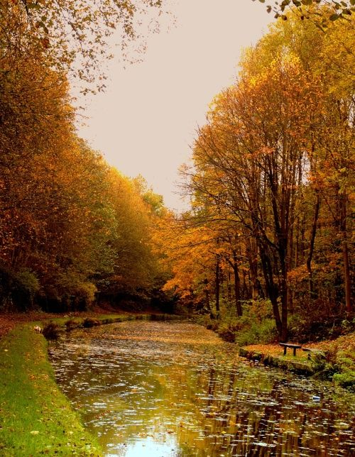 Autumn Canal The Huddersfield Canal at Mossley A picture of: Mossley, Greater Manchester