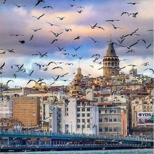 Galata kulesi/İstanbul/// Galata Kulesi, İstanbul'un Galata semtinde bulunan bir kule. 528 yılında inşa edilen yapı, şehrin önemli sembolleri arasındadır. İstanbul Boğazı ve Haliç, kuleden panoramik olarak izlenebilmektedir.