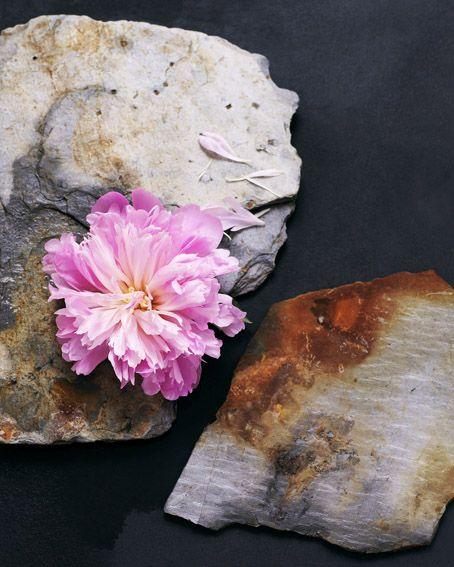 Direction artistique : Sylvia Eustache Rools / Photo : Sophie Tramier. Still life * Nature * Pivoine