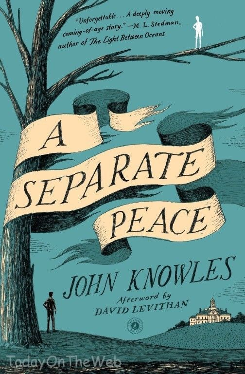 A Separate Peace New Paperback by John Knowles 743253973 | eBay