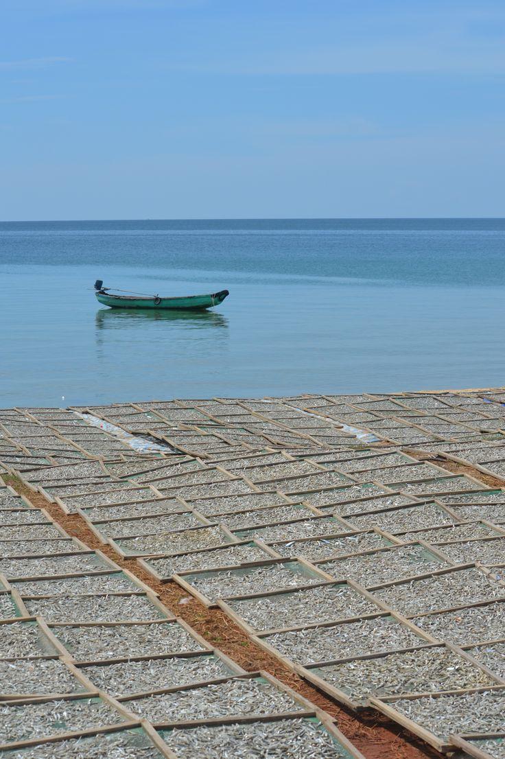 Drogende verse vis op een afgelegen strandje op Phu Quoc eiland http://www.pimenjiska.nl/fotos-van-phu-quoc-eiland