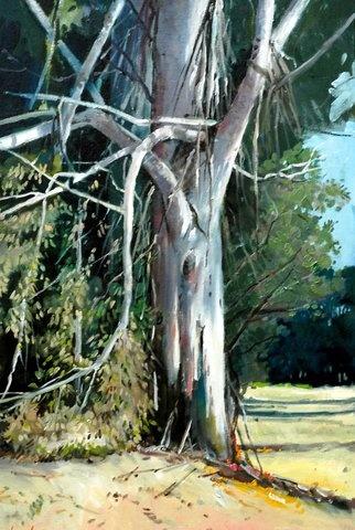 Gum tree painted by SA artist John Smith