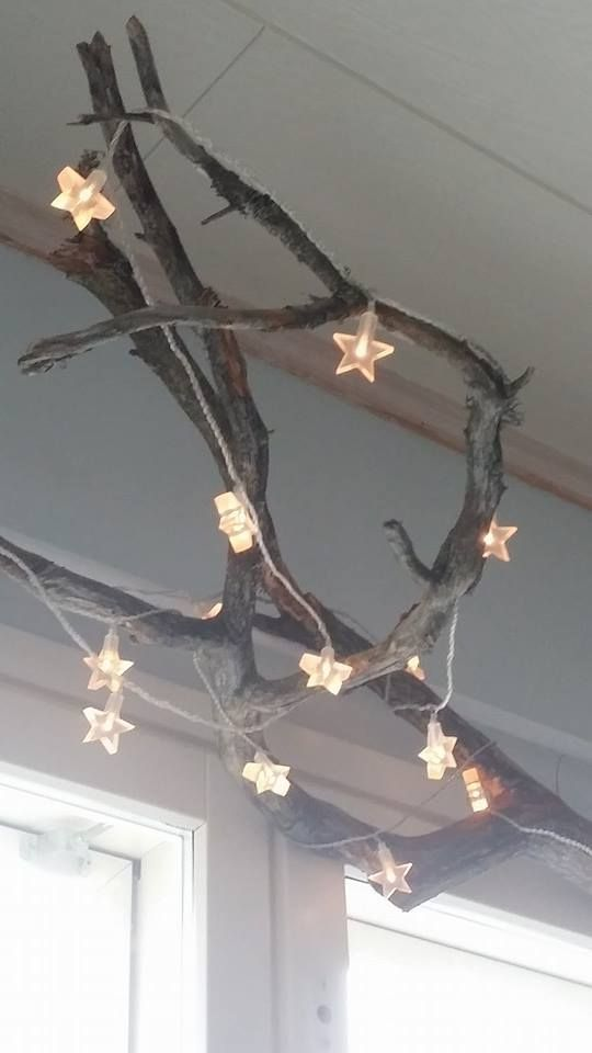Starlights with branch