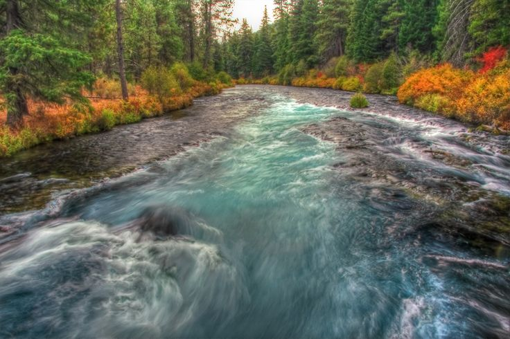 25 best central oregon parks images on pinterest central for Fish hatchery michigan