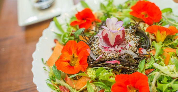 Flower power salad. Freshly picked kitchen garden salad leaves and mustard sprouts, topped with a light honey vinaigrette and edible flowers...