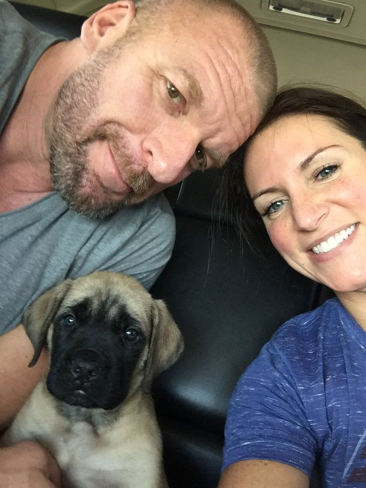 Triple H & Stephanie McMahon with their new English Mastiff puppy, Andre #WWE