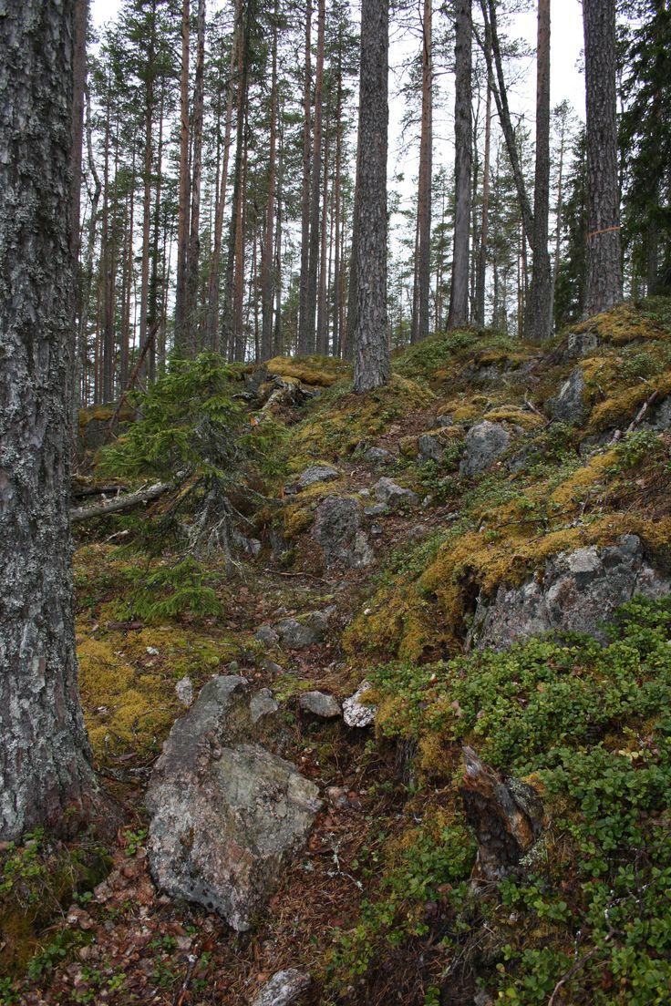 Sweden, Sverige, Jämtland