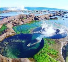 Take a dip in the Figure 8 Pools. | 23 Magical Things You Didn't Know You Could Do In NSW