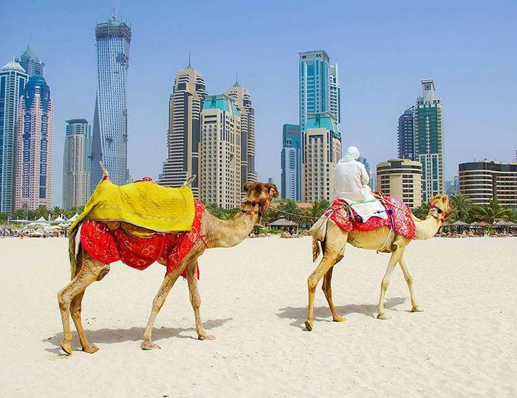 Leserreise 5001 Globalis Arabische Emirate - Dubai Exklusiv! - VorteilePlus.de von Nussbaum Medien
