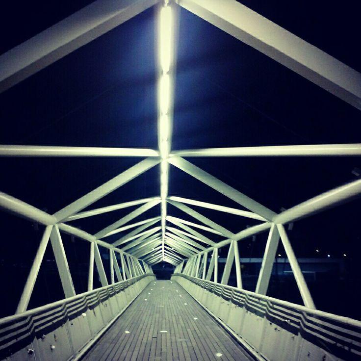 Cience museum bridge, Valladolid (Castilla y León) #Valladolid #Spain