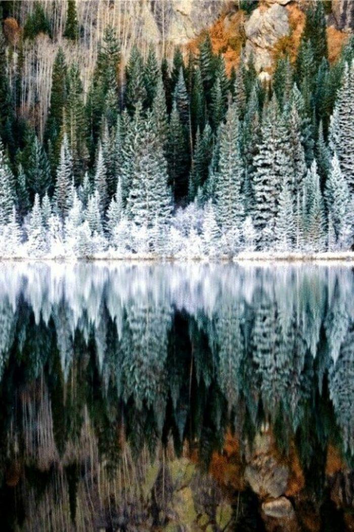 Un fond d écran hiver gratuit fond d écran gratuit paysage