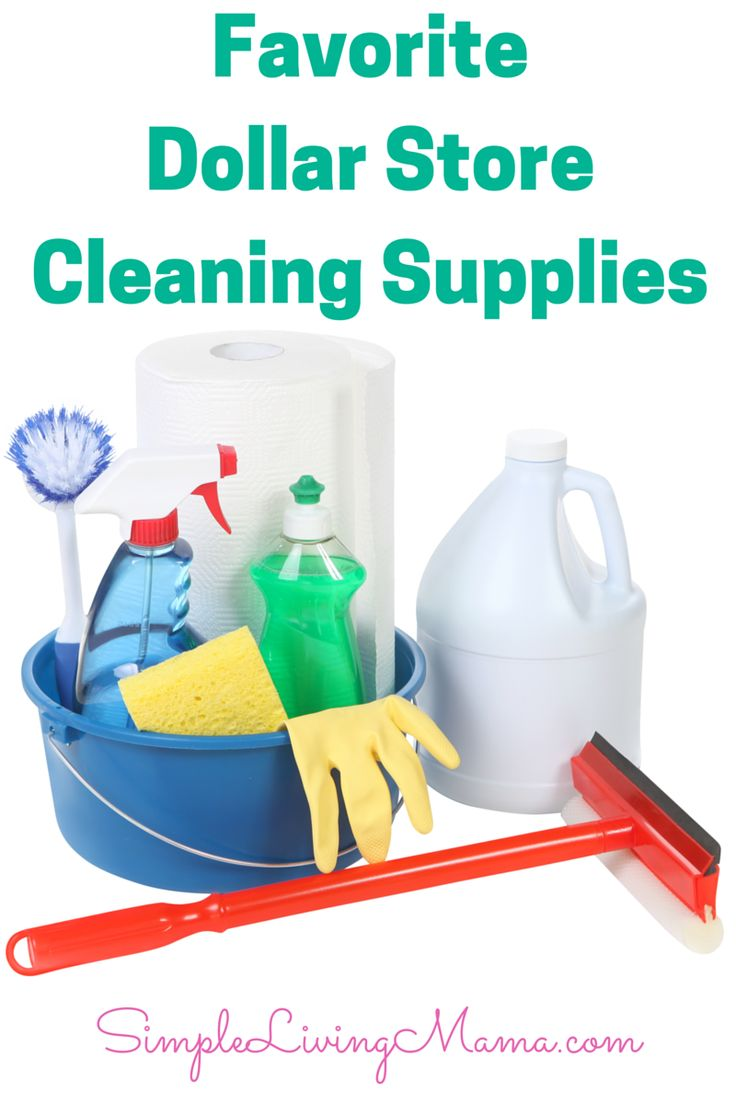 What Cleaning Supplies to Buy at the Dollar Tree - Simple Living Mama