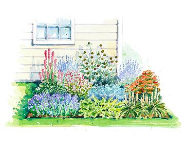 1000+ images about Gardening Zones 9 & 10 trees, shrubs ...