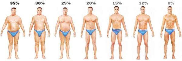 body fat in body pictures