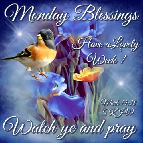 ✨Monday Blessings!✨Watch ye and pray✨Mark 14:38✨Have a Lovely Week!✨