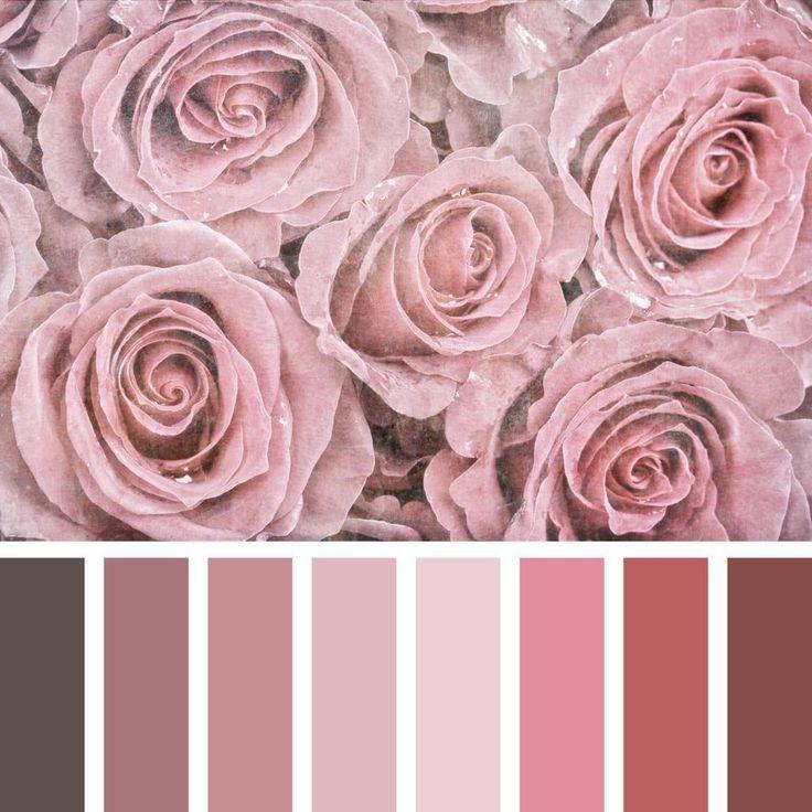 Fashionable Shades Of Dusty Rose In Home Interior In 2020 Mit Bildern Staubige Rose