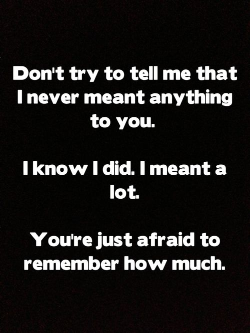 don't try to tell me that i never meant anything to you. i know i did i meant a lot. you're just afraid to remember how much