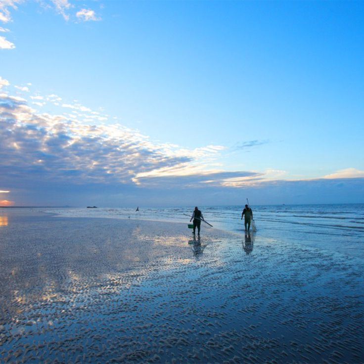 The best of British beaches... Camber Sands.