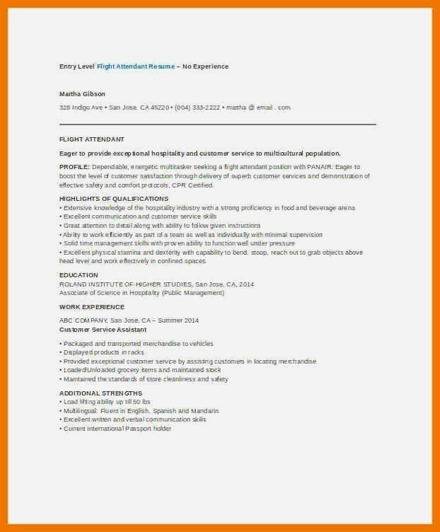Resume Example Cv Example Professional And Creative Resume Design Cover Letter For Ms Word Resume Examples Flight Attendant Resume Resume No Experience