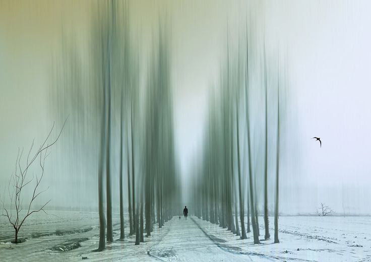 Josh Adamski was born in 1948 in Great Britain, where he spent most of his life, but he is currently based in Israel. In his works Adamski mostly focuses o
