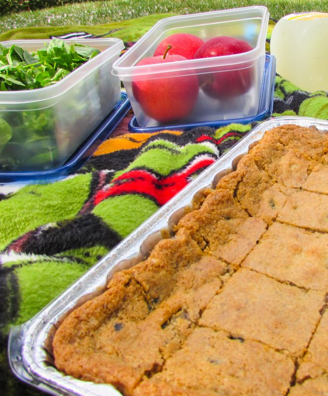 Gluten Free Cookie Bars for a Picnic #SundaySupper | Gluten Free Crumbley