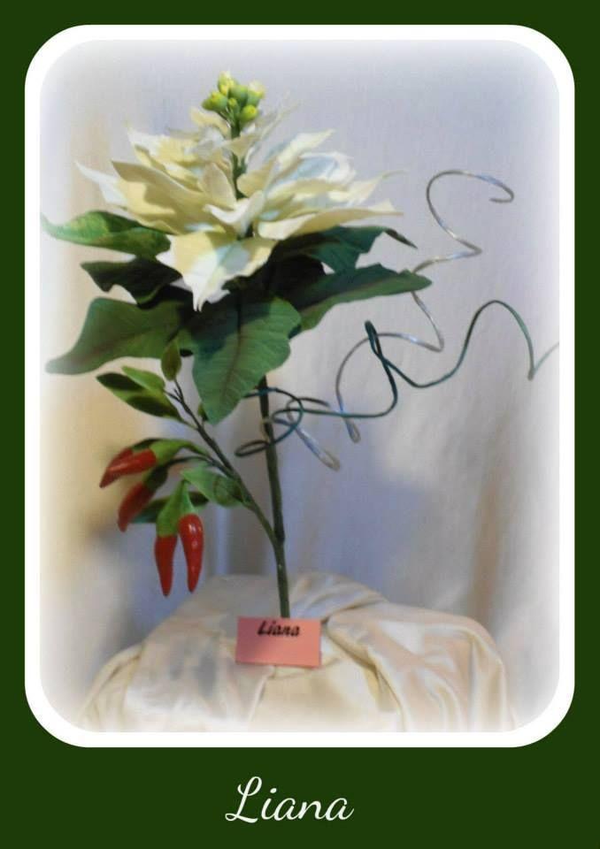 stella di natale e peperoncino in porcellana fredda realizzato da liana Melis