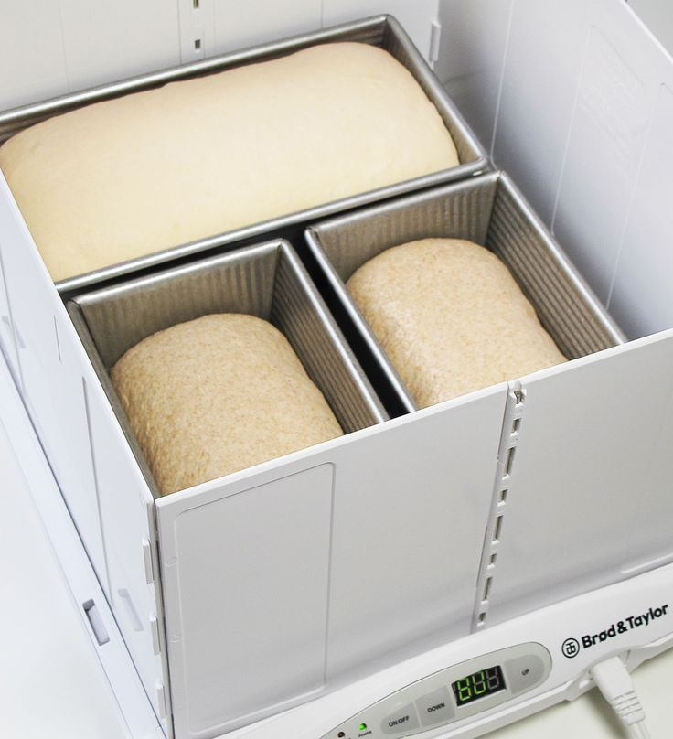 three loaves rising in the folding proofer