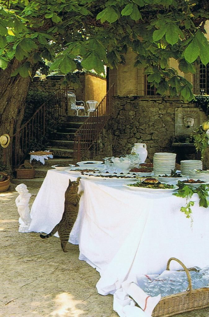 Provence - Picnic - Cat - Le Chat - Table - Summer - Outdoor Dining - Basket - France - Farm - Farmhouse - Stone Building - Buffet - Lunchtime - Dinnertime