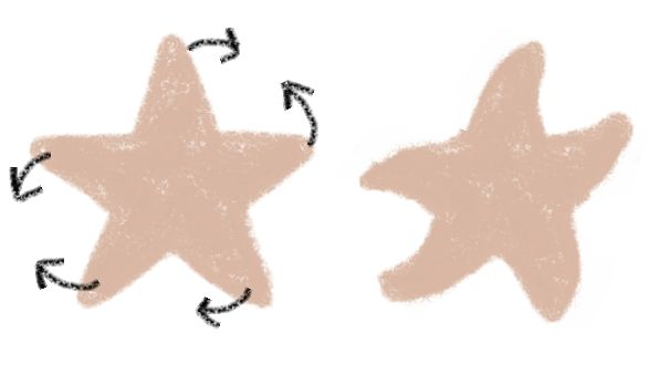 Starfish Cookies: Use finger to push dough - tips of starfish arms - around.
