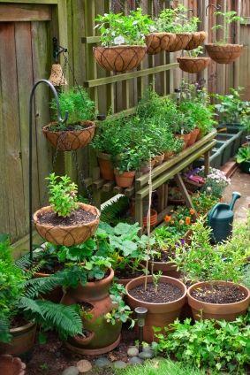 Kitchen container garden!: Gardens Ideas, Container Gardens, Small Spaces Gardens, Side Yard, Vegetables Gardens, Herbs Gardens, Flower Pots, Small Gardens,  Flowerpot