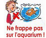 Les poissons en maternelle PSS/MS/GS
